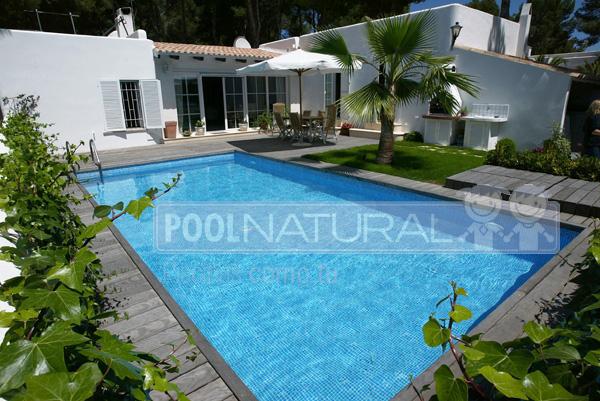 Tipos de piscinas construcci n de piscinas piscina en casa for Tipos de piscinas para casas