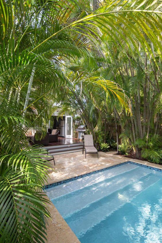 Diseño de piscina tropical